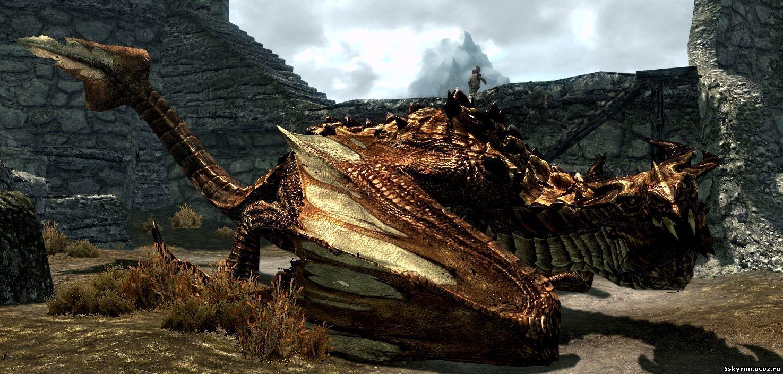 Сила драконьих душ